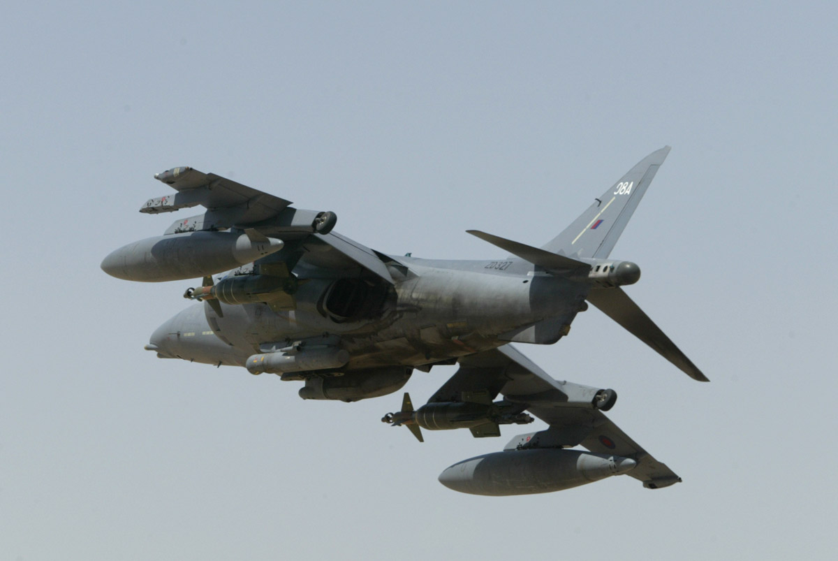 Harrier_limage_05_13_2.jpg