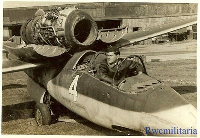 Org-Photo-US-Pilot-Posed-w-Captured-Luftwaffe (1).jpg