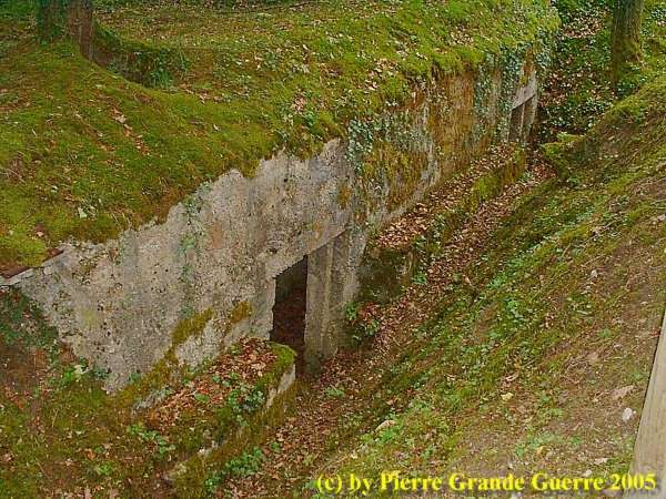 16.9.aaa-Apremont-Forest-Trenches.jpg