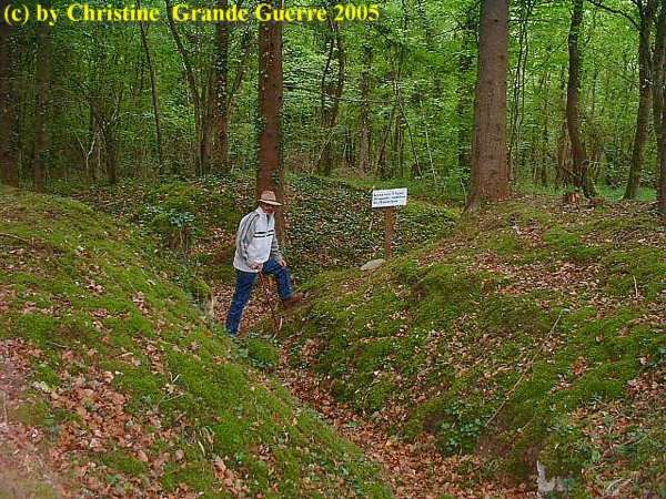 16.9.aaa-Apremont-Forest-Trenches-3.jpg