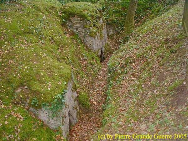 16.9.aaa-Apremont-Forest-Trenches-5.jpg