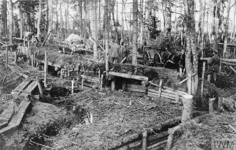22.9.aa German troops in the captured Russian trenches in the woods near Jakobstadt.jpg