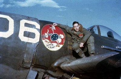 1st Brazilian Fighter Squadron - Italy, 1944-45. Part of the USAAF 350th FG..jpg