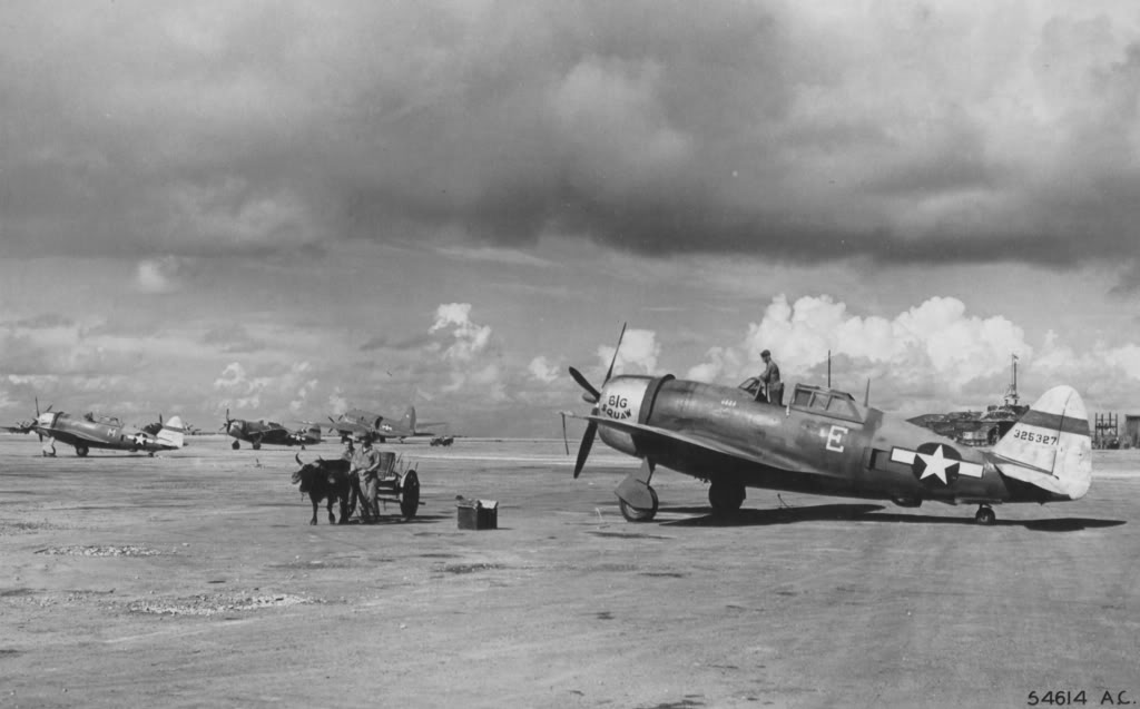 318thFG-43-25327-Big-Sqwaw-19thFS-Isley-Field-Saipan.jpg