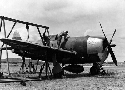P-47D_The_Wicked_Wench_19th_Fighter_Squadron_318th_Fighter_Group.jpg