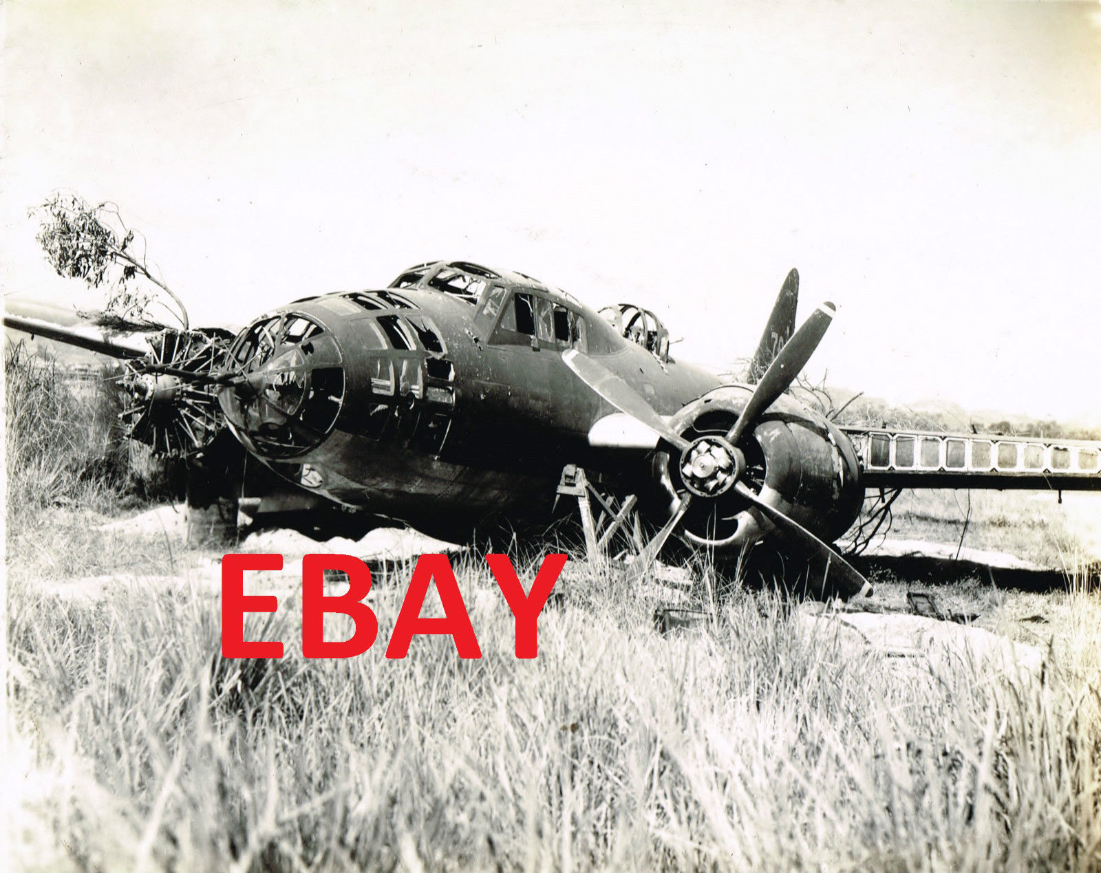 CRASHED JAPANESE BOMBER AIRCRAFT.jpg
