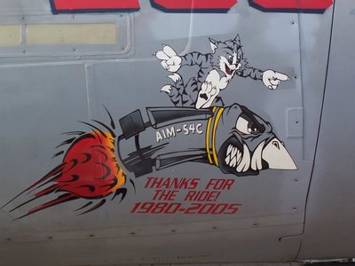f-14b_vf-11_noseart_color.jpg