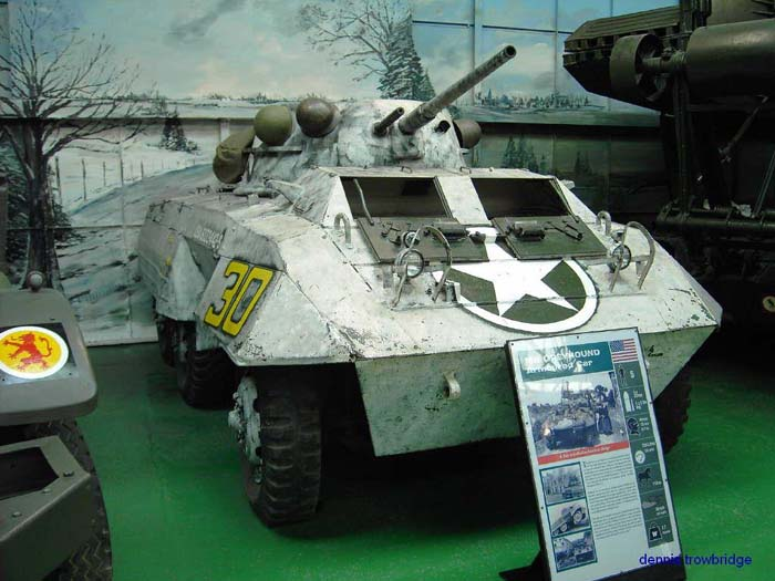 m8GreyhoundBovington082005TROWBRIDGE1.jpg