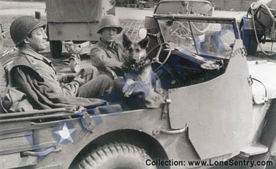 f7_jeep_305th_engineers_80th_infantry_division_small.jpg