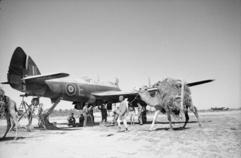 Beaufighter_89sq_E_X8166_CastelBenito.jpg