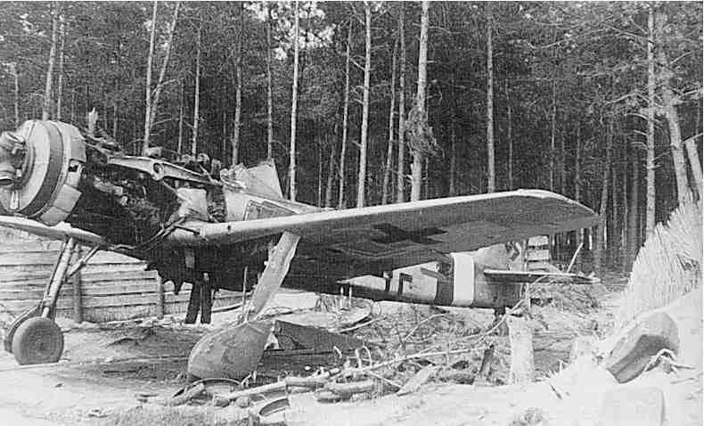 Fw-190 D-9 brown 4.jpg